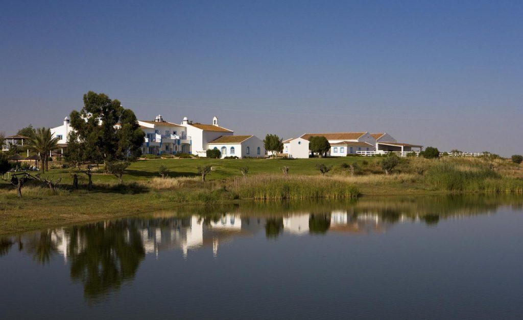 Wijn in Portugal Wijngaarden in de Alentejo Herdade Dos Grous