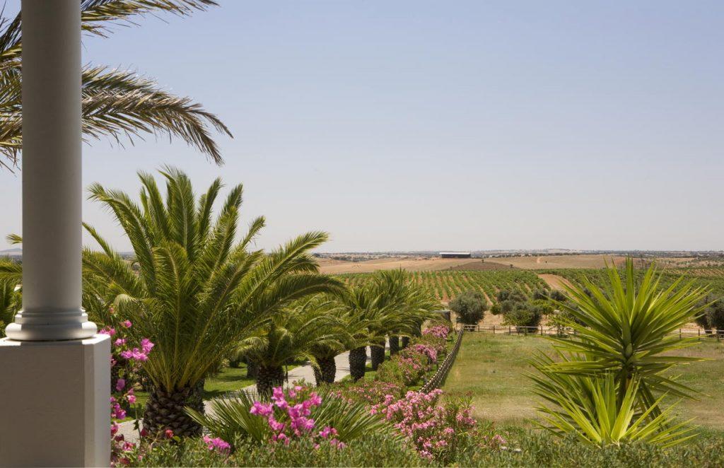 Landschap Alentejo Portugal